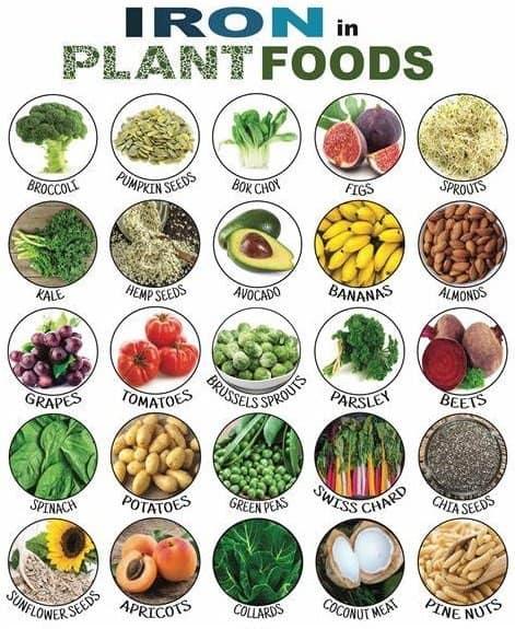 Nguồn cung cấp chất sắt từ dành cho người ăn chay